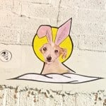 Omayra Amador's wheat paste of Pippi